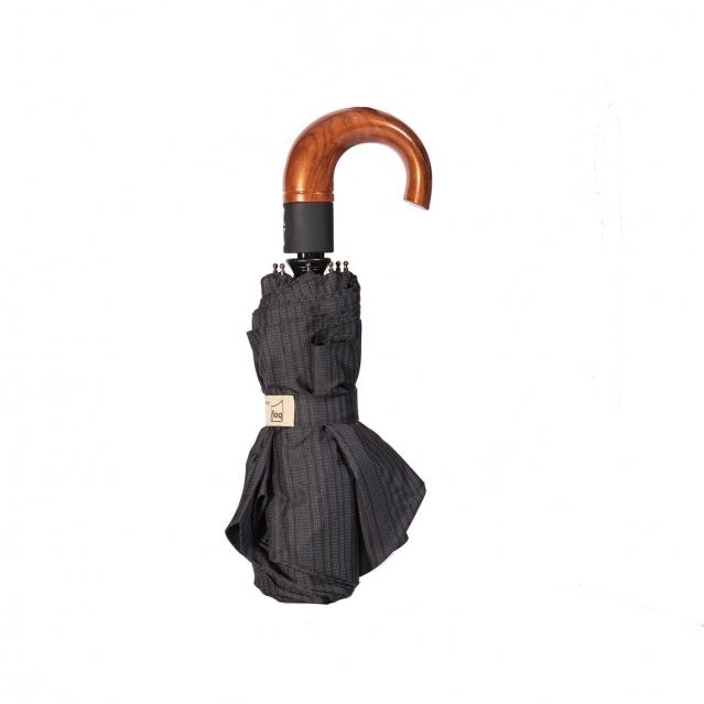 چتر فرس